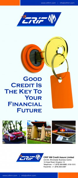 CRIF-TheKeyToYourFinancialBanner-33x78.cdr